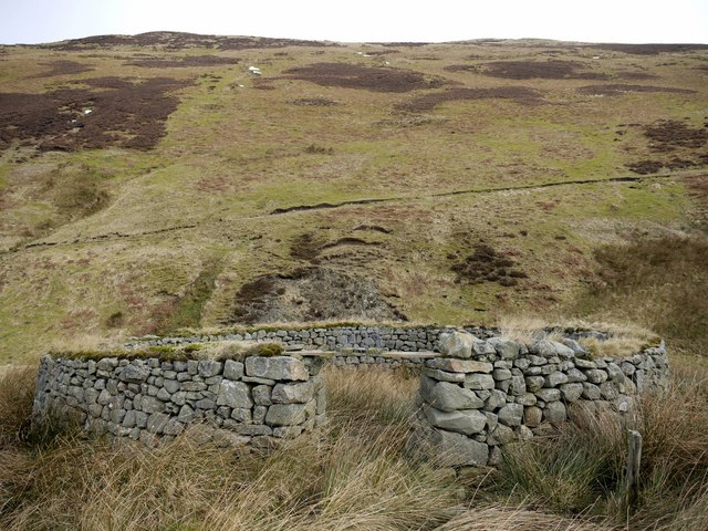 Sheepfold above Hope Sike