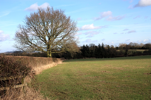Footpath to Gilver's Lane