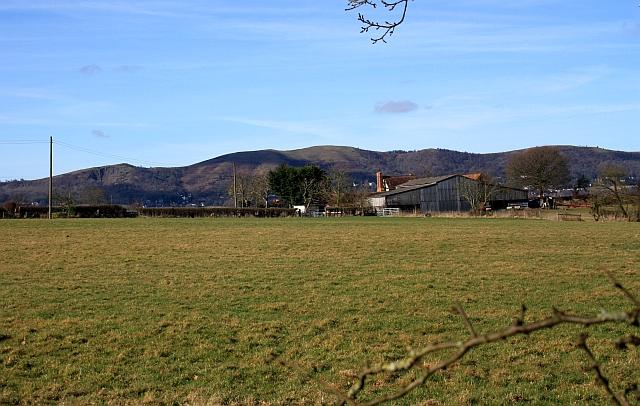 Hook Farm