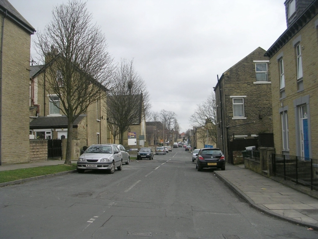 Thorn Street - viewed from Lingwood Avenue