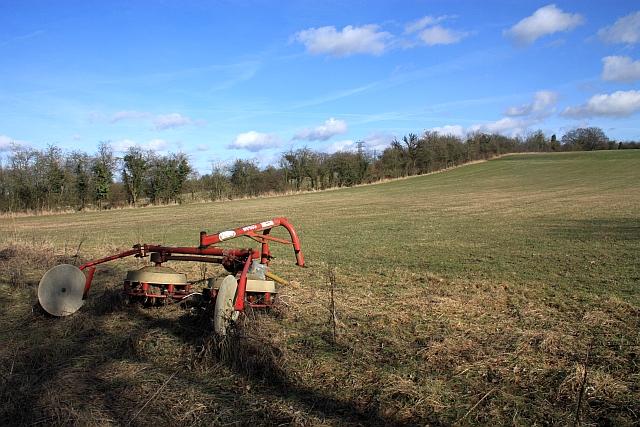 Hay Pasture