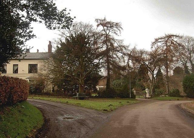 Scaftworth village bench around the tree