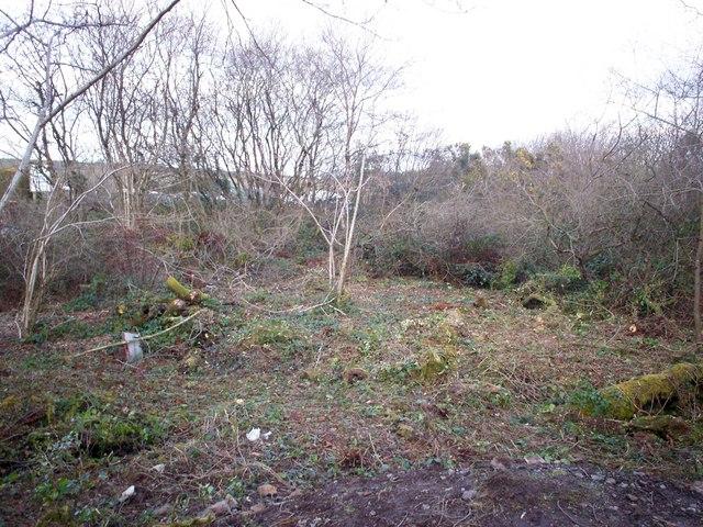 The Clay Pits, Llanteg