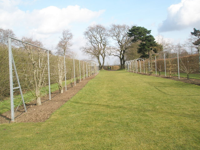 Path from the fruit fields to the Orchard Café within RHS wisley