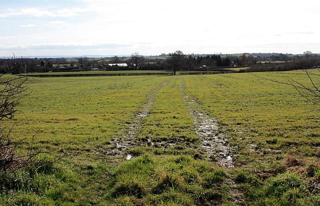 Pasture, Hook Common