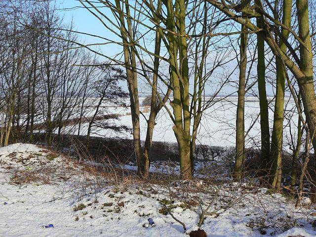 View towards Ruddington Moor