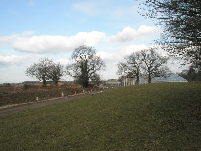 Looking towards the new glasshouses from the edge of  the arboretum