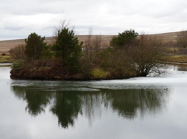 Island on Cefn Golau pond