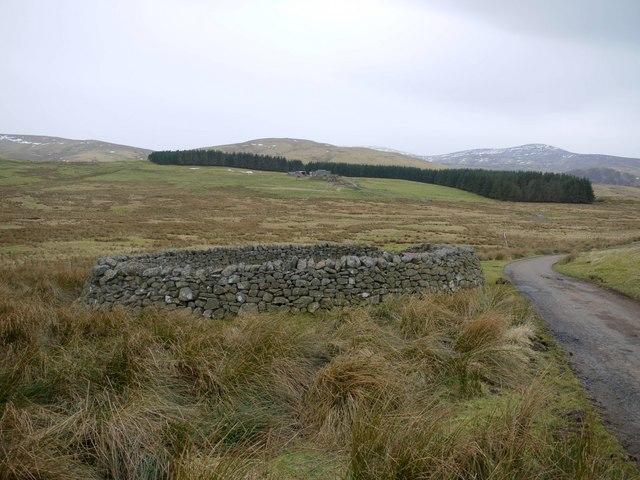 Sheepfold beside road to Ewartly Shank