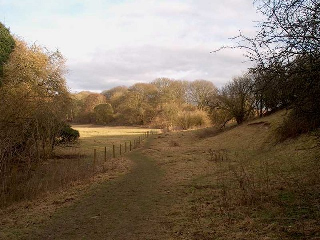 Footpath between Whitchurch Town Mill and Bere Mill