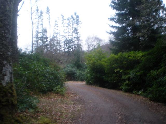 Port Clair entrance Driveway