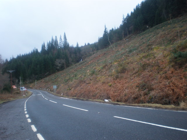 Forestry Clear Fell on A82