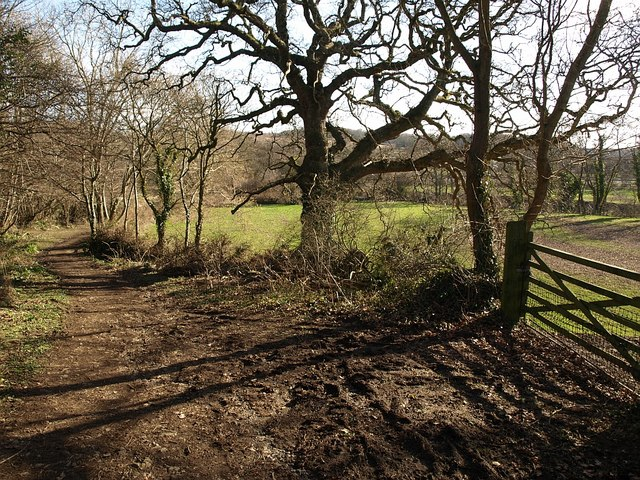 Bellamarsh Lane