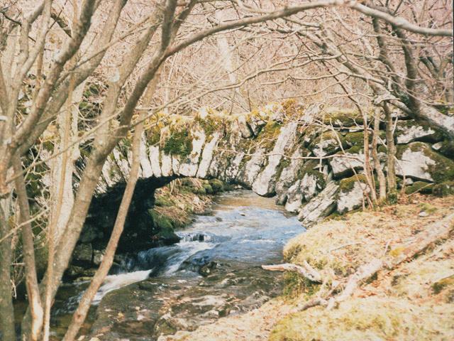 Footbridge over Crook GIll