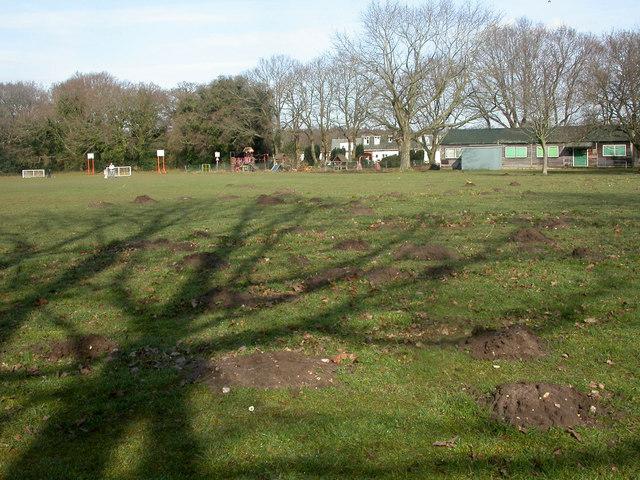Parley Millennium Garden, molehills