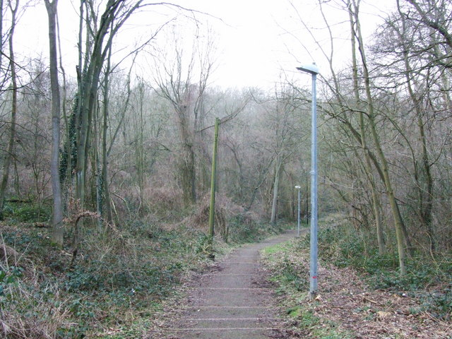 Tunbury Avenue, Walderslade Woods
