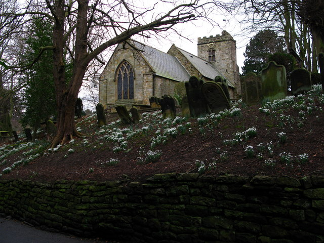 Scalby Snowdrops