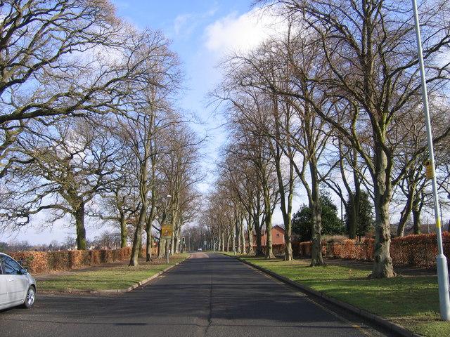 Cotteridge - Heath Road