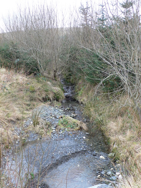 Stream in the Gwydir Forest