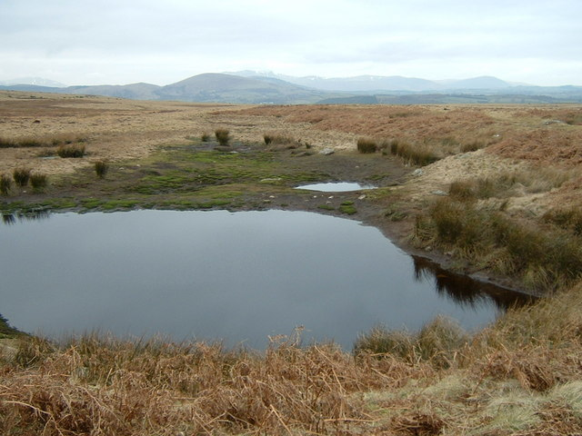 Partly dried-out tarn on Moor Divock