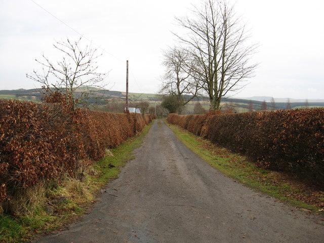 The straight to Newbigging Bush Farm