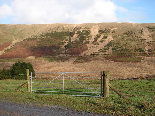 Farm gate at Llidiart Coch