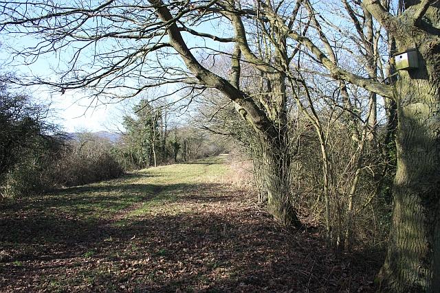Railway nature reserve
