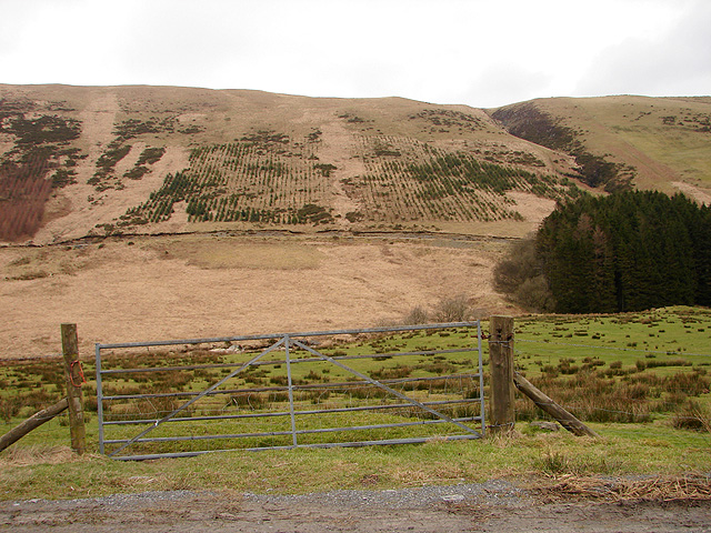 Farm gate at Llidiart Coch
