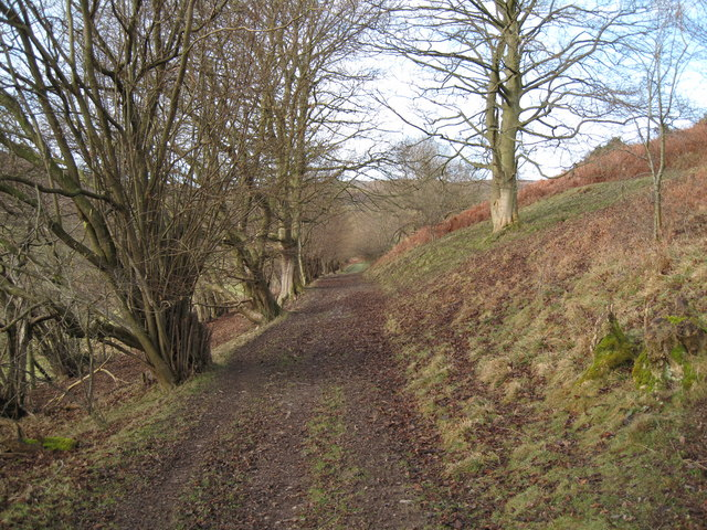 Footpath to Garth Farm