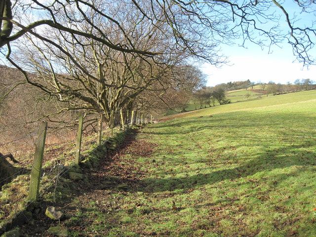 View of Footpath to Garth Farm.