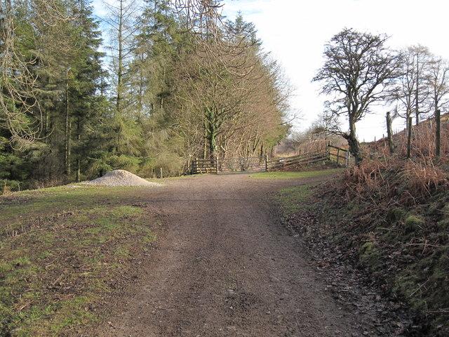 Bridleway to Cilcain