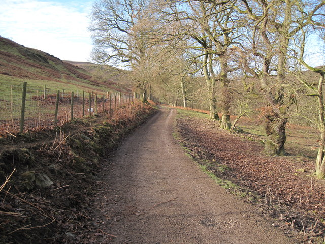 Bridleway between Cilcain and Offa's Dyke Path