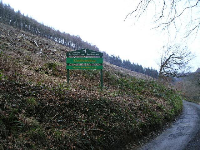 Llanllawddog, Brechfa Forest