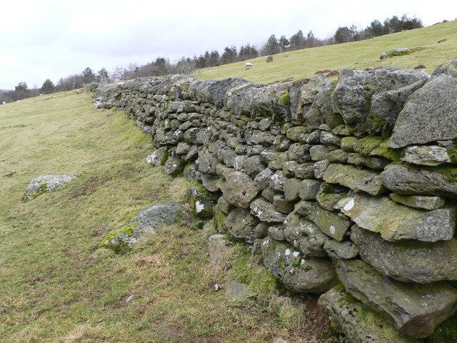 Dry stone wall on Llechwedd Oernant
