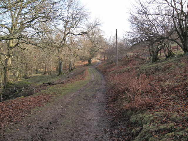 Bridleway near Garth Farm