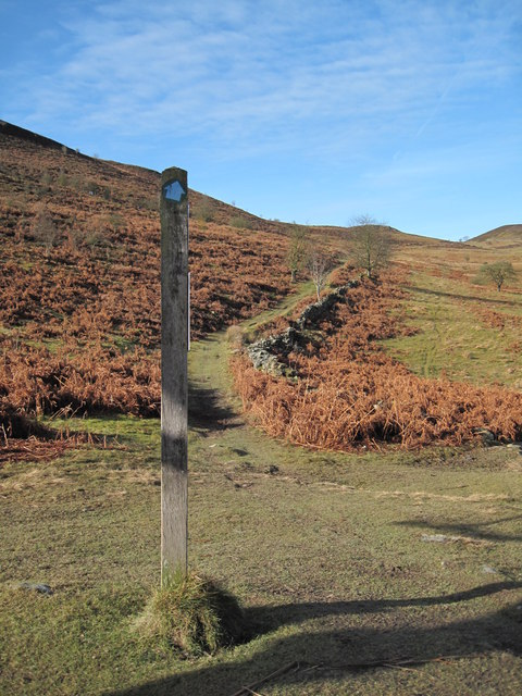 View of the Bridleway towards Offa's Dyke Path