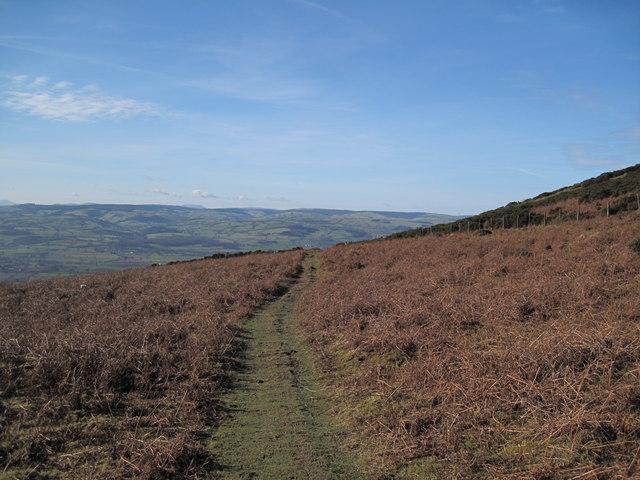 Footpath on slopes of Moel Dywyll