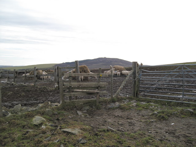 Stile and Footpath on Moel Llys-y-Coed