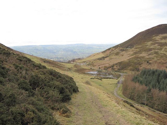 View of the Footpath on Moel Llys-y-Coed