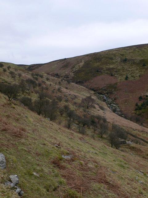 Looking up Cwm Hafodyredwydd