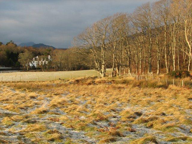 Fields at Kilmarie