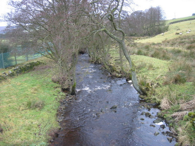 Lisles Burn at East Woodburn