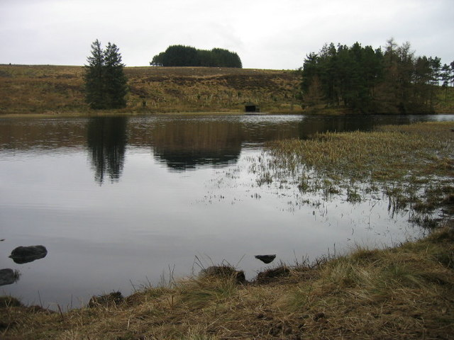 Lake at Lake Wood