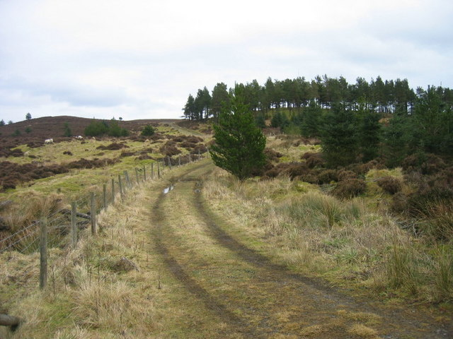 Footpath leading to Ray Fell