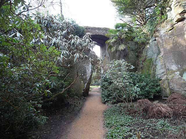 Quarry Garden at Belsay