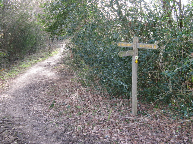 Weald Way junction with short footpath