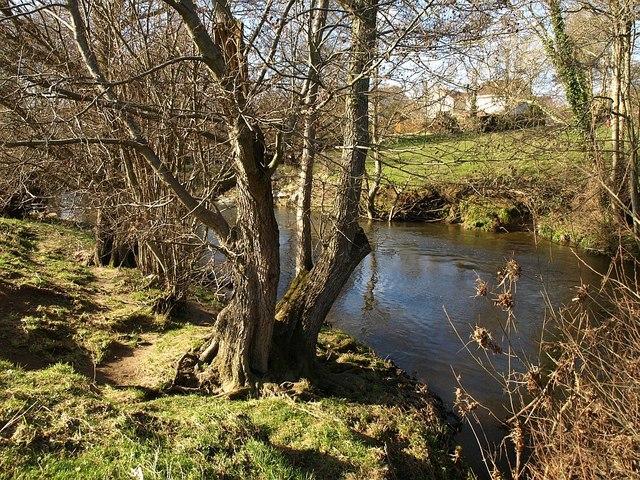 River Teign at Chudleigh Knighton
