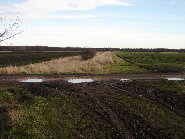 Fields and drain near Lindholme Grange
