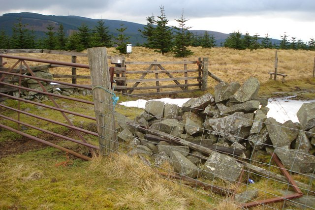 Gates, walls, fences and a stile on Middle Hill