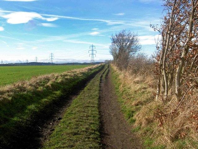 Bridleway from Carlton called Wood Lane